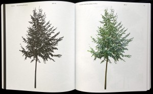 Forst_Catalogue_1