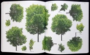 Forst_Catalogue_4