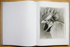 Hühner_3