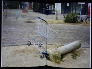Einkaufswagen_4