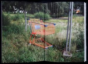 Einkaufswagen_5